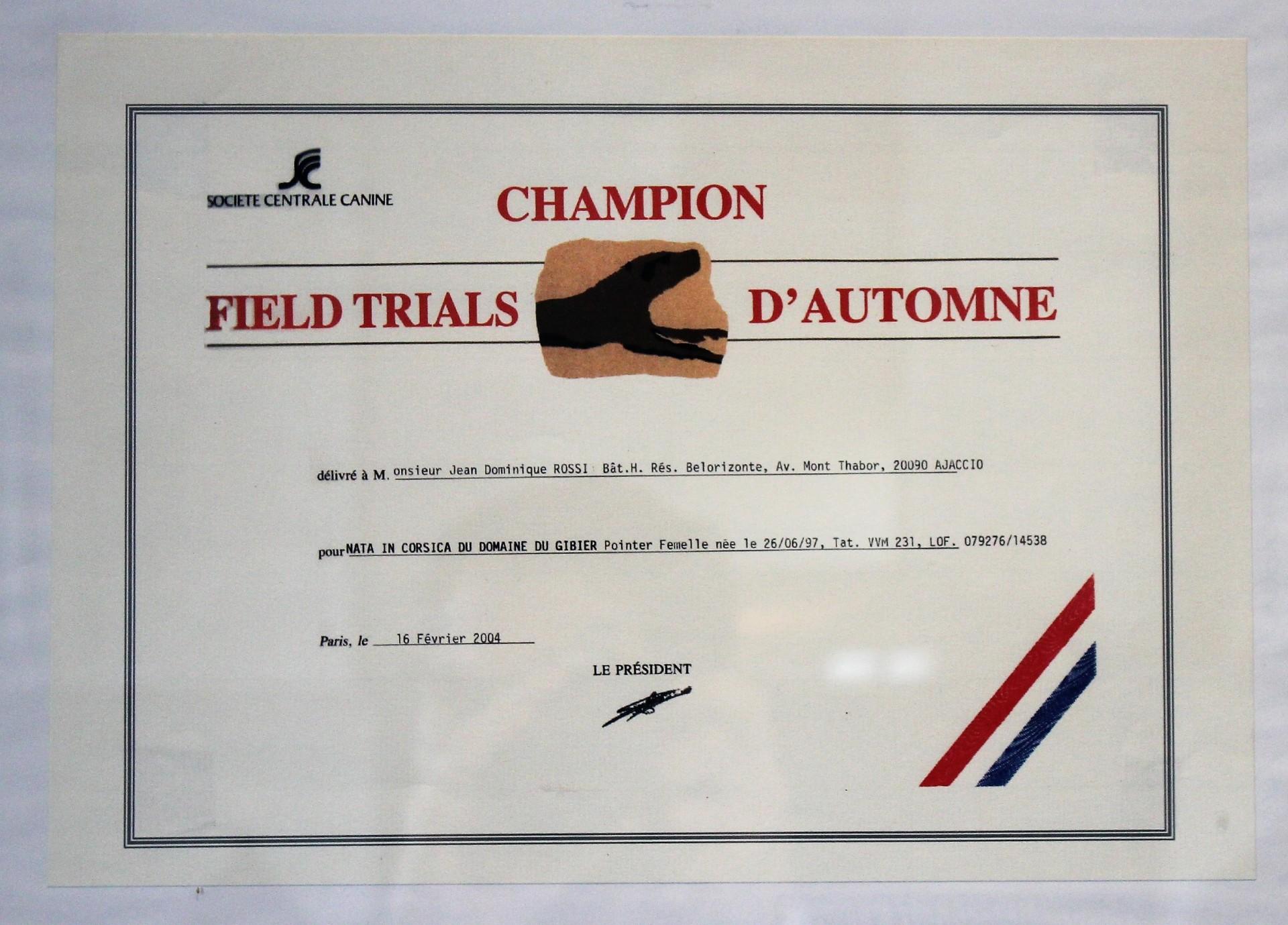 reconnaissance-champion-automne-field-trials dresseur eleveur domaine du gibier corse du sud